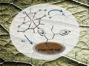 artificial-leaf-solar-fuel