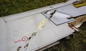 wing-mh17