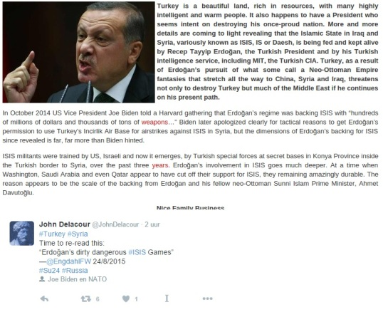 erdogan-plane